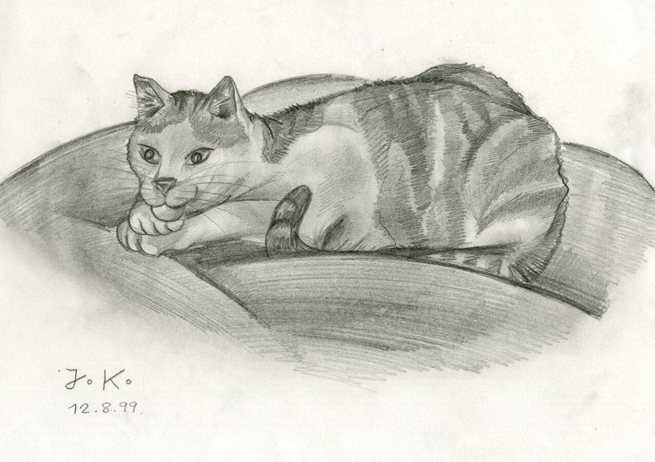 Katze (12.08.1999)